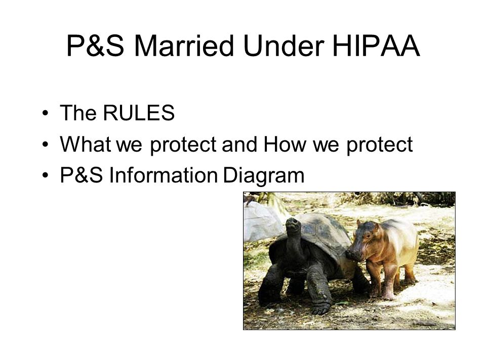 P&S Married Under HIPAA The RULES What we protect and How we protect P&S Information Diagram