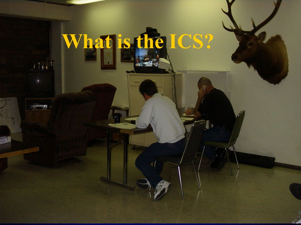 What is the ICS?