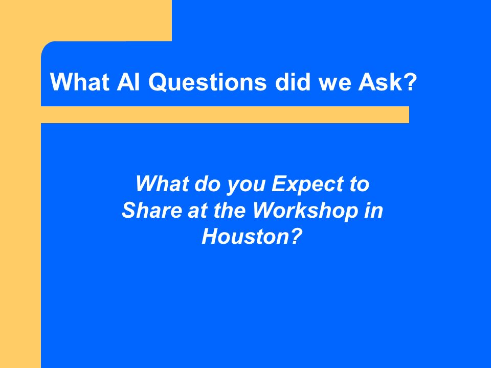 What AI Questions did we Ask What do you Expect to Share at the Workshop in Houston