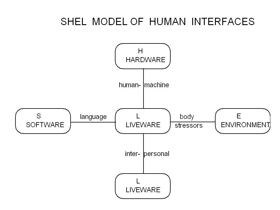 Shel model