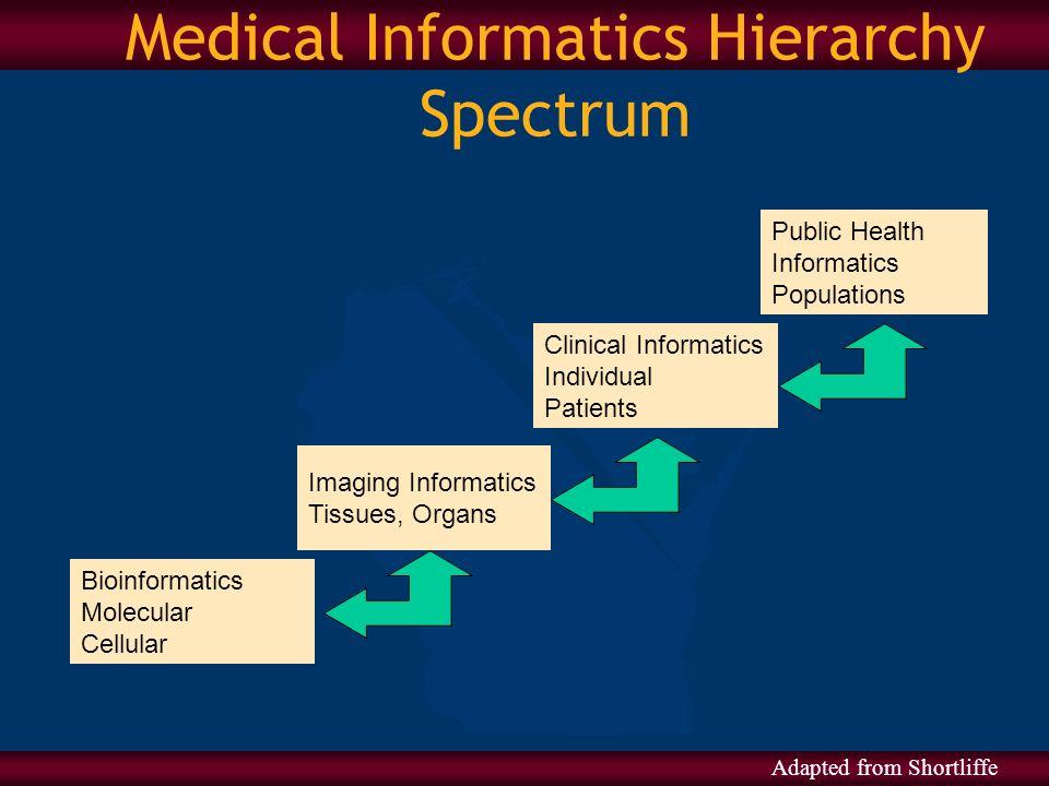 Medical Informatics Hierarchy Spectrum Bioinformatics Molecular Cellular Imaging Informatics Tissues, Organs Clinical Informatics Individual Patients