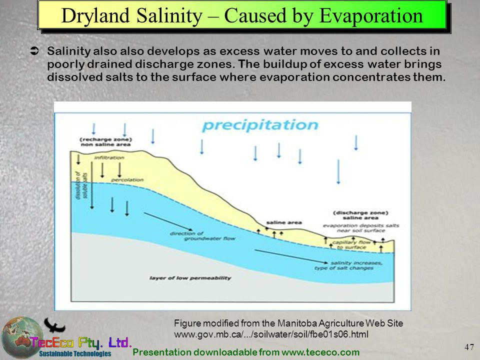 Presentation downloadable from www.tececo.com 47 Dryland Salinity – Caused by Evaporation Salinity also also develops as excess water moves to and col