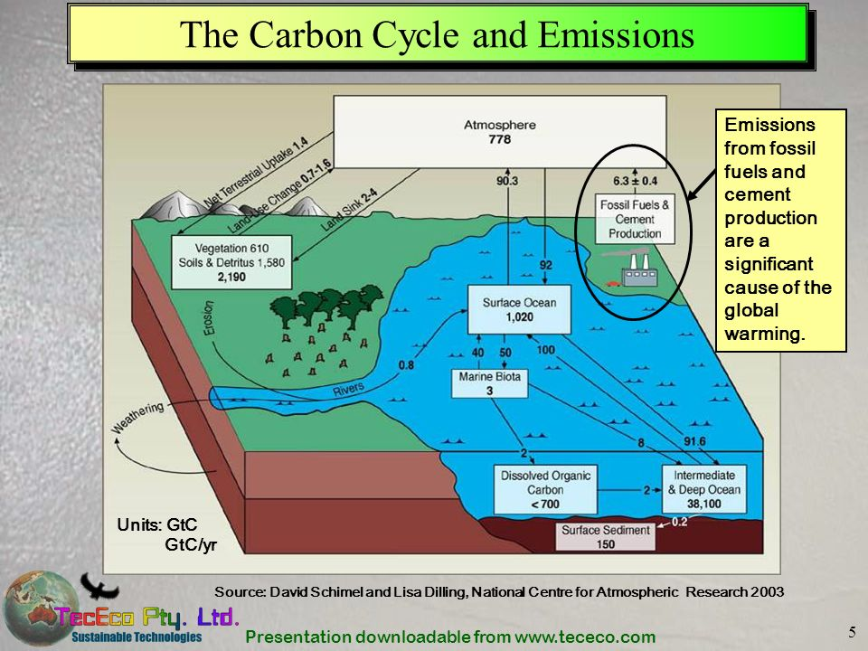 Presentation downloadable from www.tececo.com 5 The Carbon Cycle and Emissions Source: David Schimel and Lisa Dilling, National Centre for Atmospheric