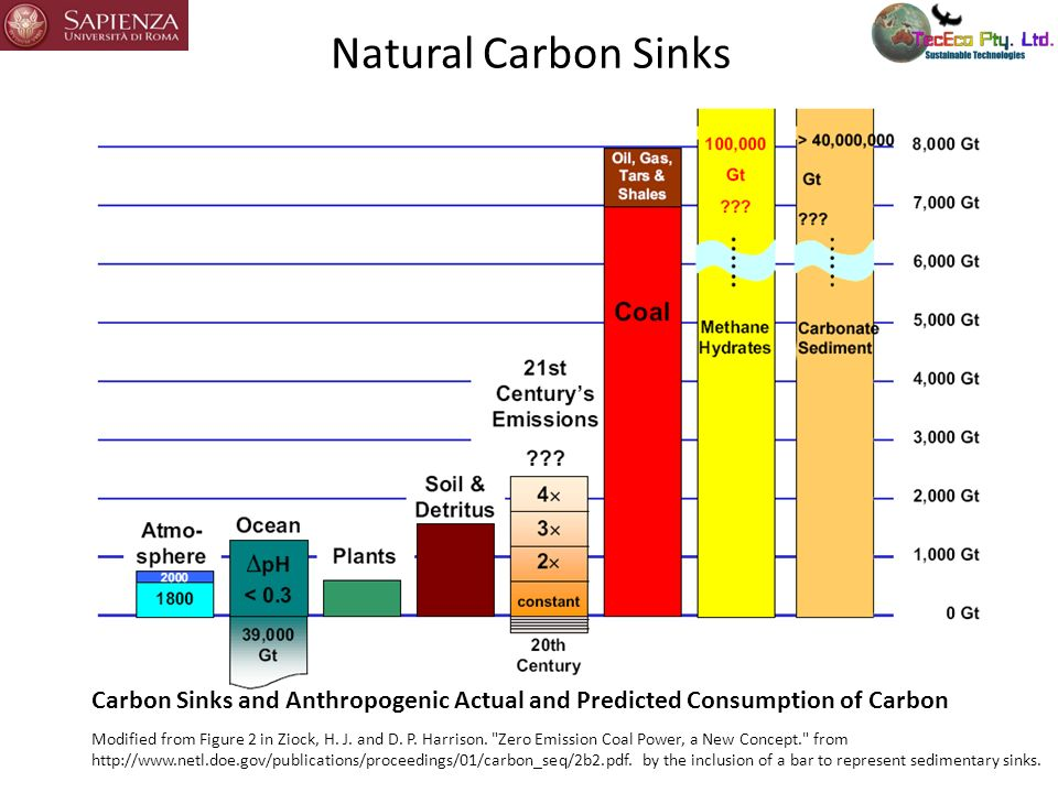 The Global Warming Problem The global CO 2 budget is the balance of CO 2 transfers to and from the atmosphere.