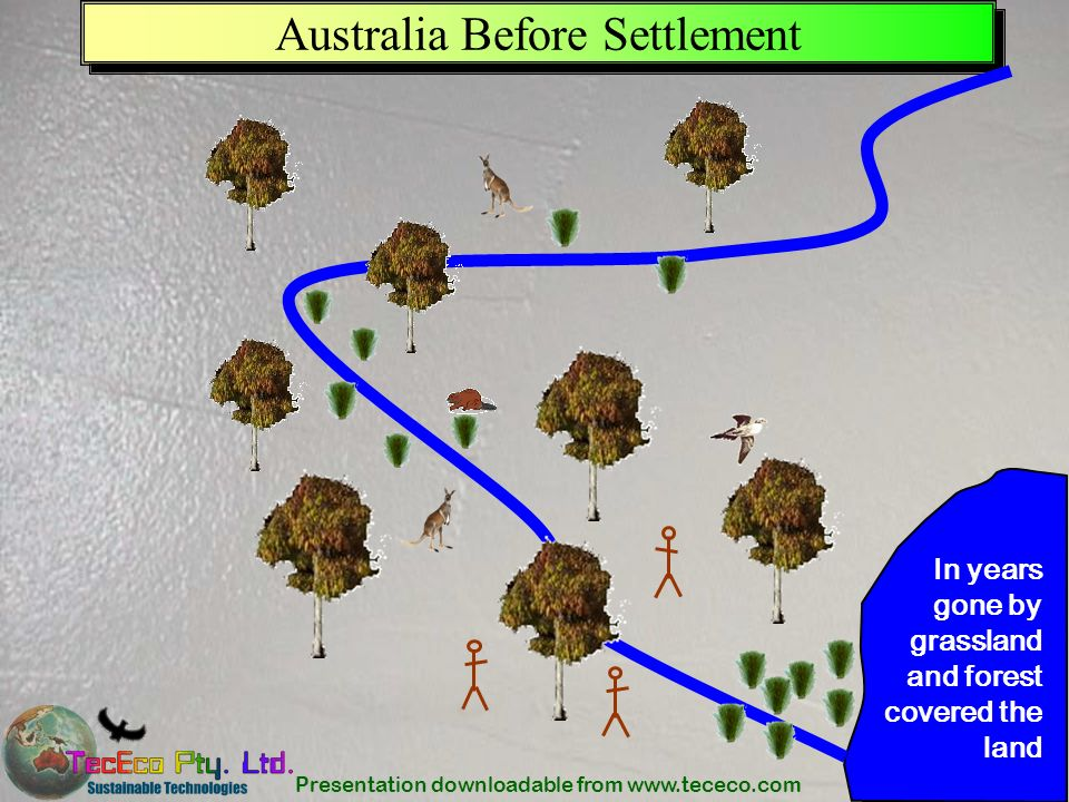 Presentation downloadable from www.tececo.com 4 Australia Before Settlement In years gone by grassland and forest covered the land