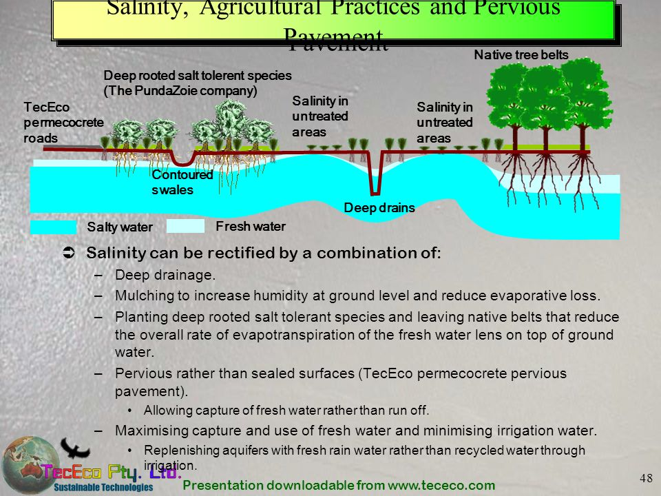 Presentation downloadable from www.tececo.com 48 Salinity, Agricultural Practices and Pervious Pavement Salinity can be rectified by a combination of: