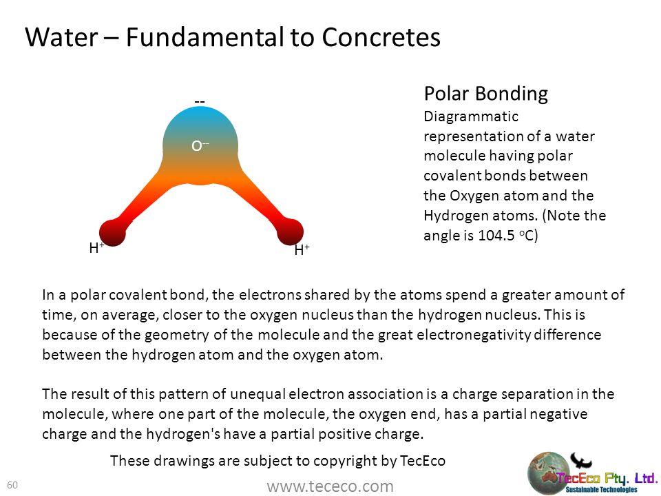 Water – Fundamental to Concretes 60 Polar Bonding Diagrammatic representation of a water molecule having polar covalent bonds between the Oxygen atom