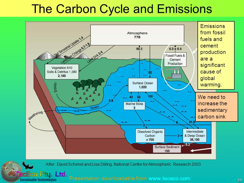 Presentation downloadable from   23 The Carbon Cycle and Emissions After: David Schimel and Lisa Dilling, National Centre for Atmospheric Research 2003 Emissions from fossil fuels and cement production are a significant cause of global warming.