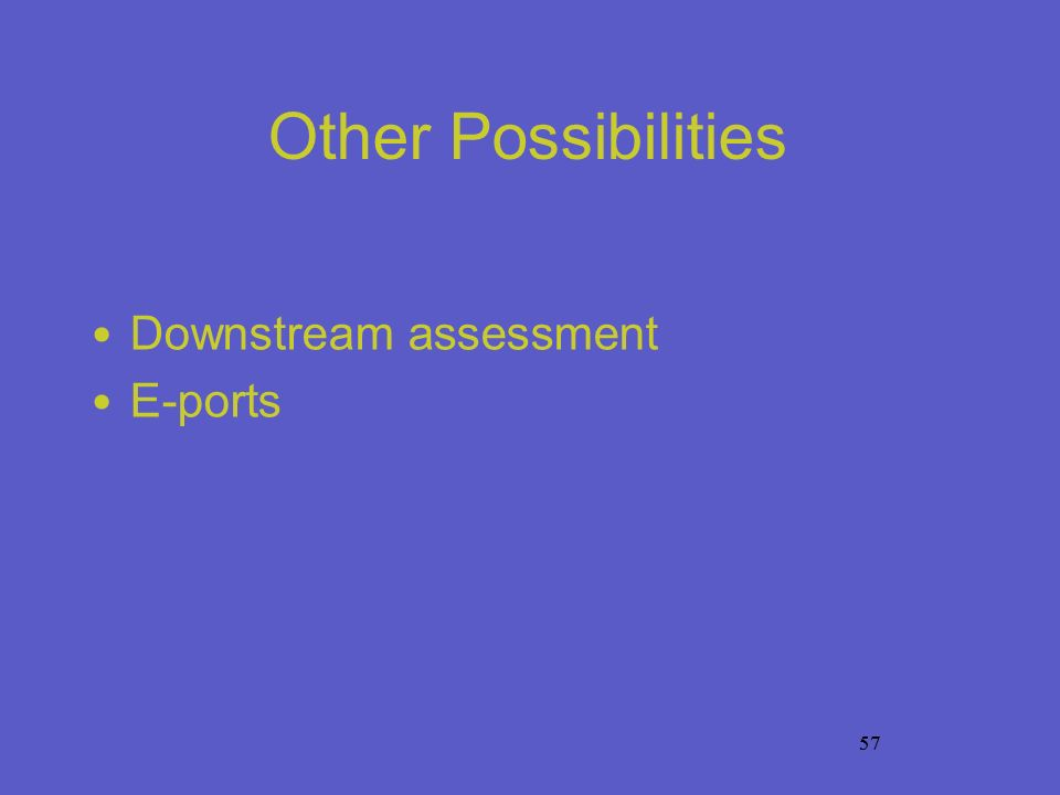 57 Other Possibilities Downstream assessment E-ports 57