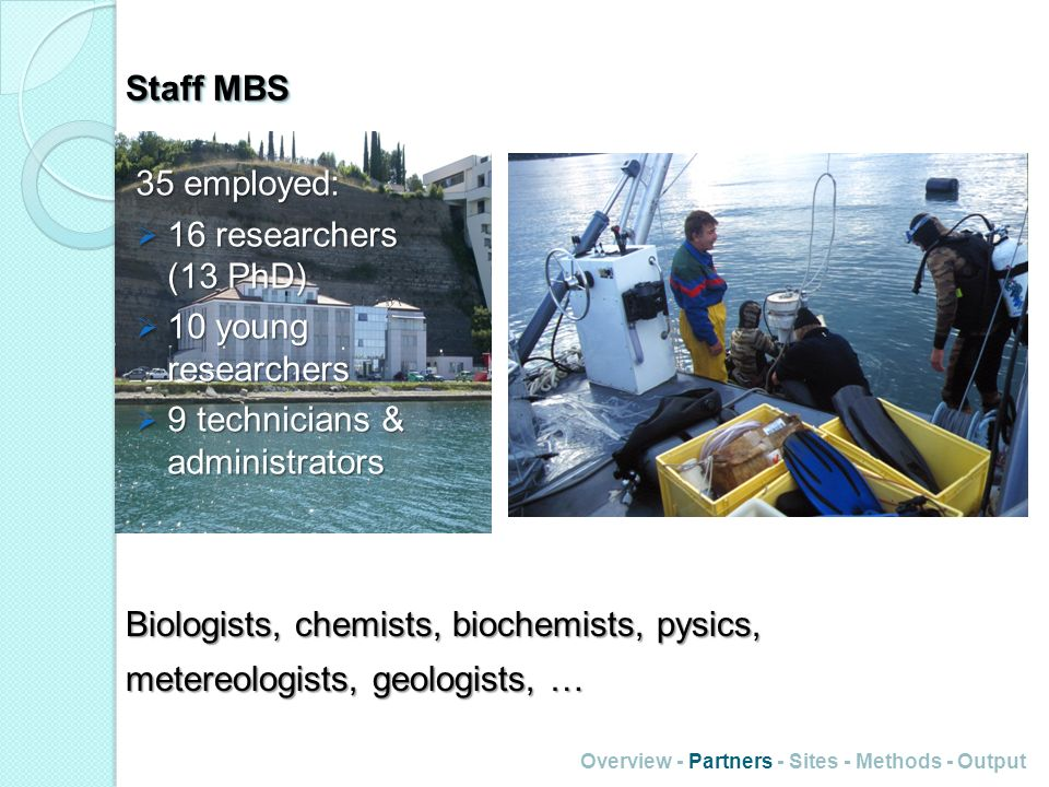 Staff MBS 35 employed: 16 researchers (13 PhD) 16 researchers (13 PhD) 10 young researchers 10 young researchers 9 technicians & administrators 9 tech