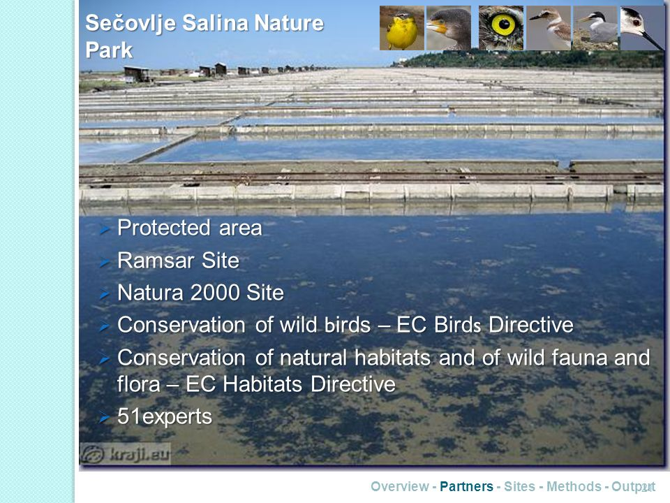 Sečovlje Salina Nature Park Overview - Partners - Sites - Methods - Output 21 Protected area Protected area Ramsar Site Ramsar Site Natura 2000 Site Natura 2000 Site Conservation of wild b irds – EC Bird s Directive Conservation of wild b irds – EC Bird s Directive Conservation of natural habitats and of wild fauna and flora – EC Habitats Directive Conservation of natural habitats and of wild fauna and flora – EC Habitats Directive 51experts 51experts