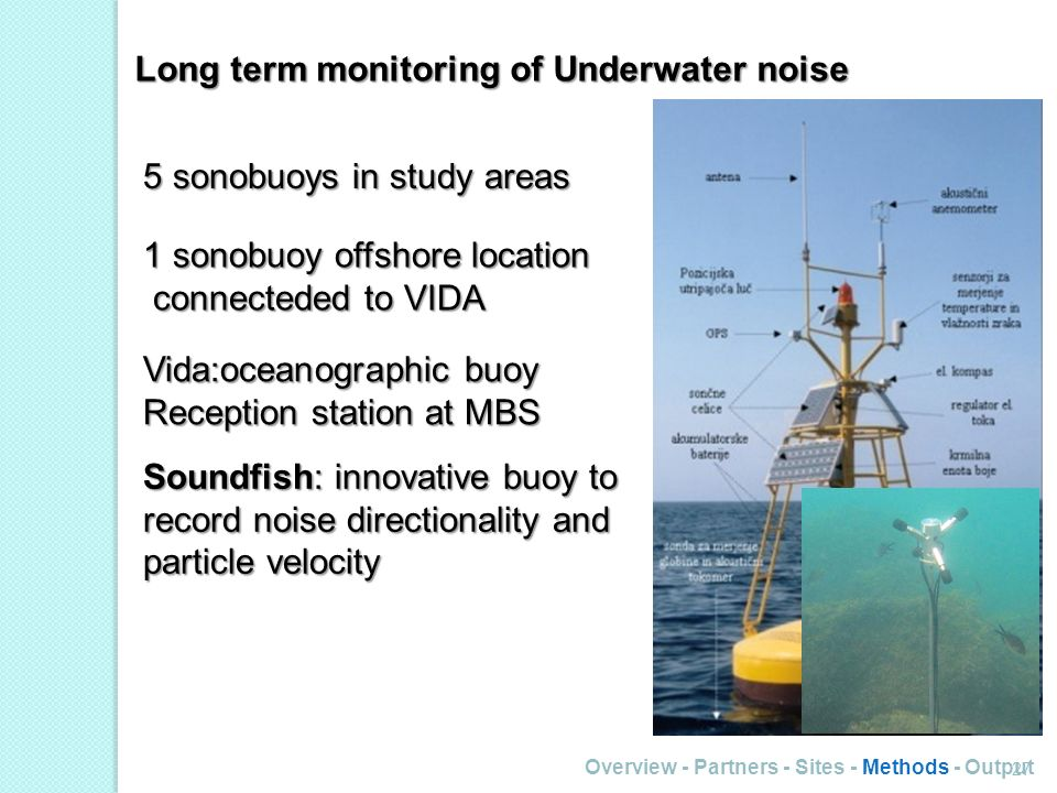 Overview - Partners - Sites - Methods - Output 27 Long term monitoring of Underwater noise 5 sonobuoys in study areas 1 sonobuoy offshore location con