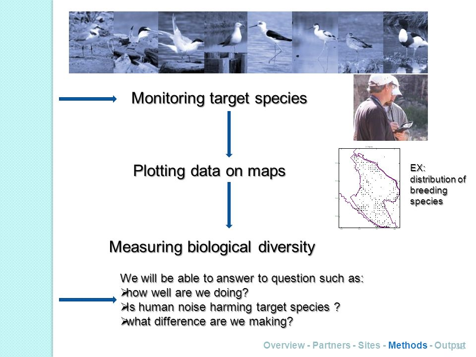 32 Monitoring target species Plotting data on maps EX: distribution of breeding species Measuring biological diversity We will be able to answer to question such as: how well are we doing.