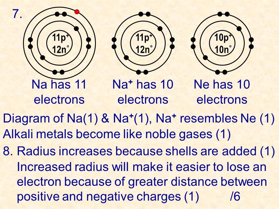 7. 11p + 12n ° Na has 11 electrons Na + has 10 electrons Ne has 10 electrons 11p + 12n ° 10p + 10n ° Diagram of Na(1) & Na + (1), Na + resembles Ne (1