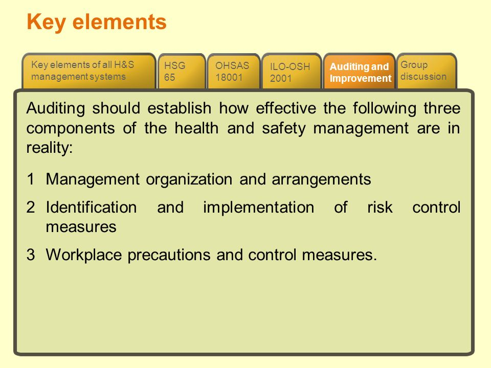 Key elements ILO-OSH 2001 OHSAS 18001 HSG 65 Group discussion Key elements of all H&S management systems Auditing and Improvement Auditing should esta