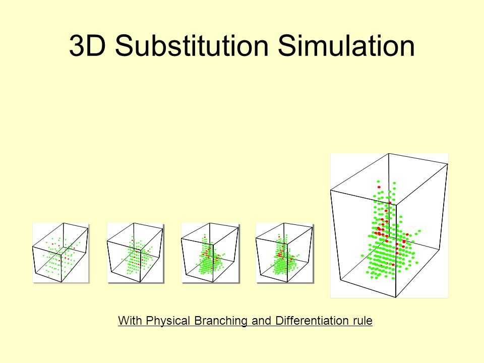 3D Substitution Simulation With Physical Branching and Differentiation rule