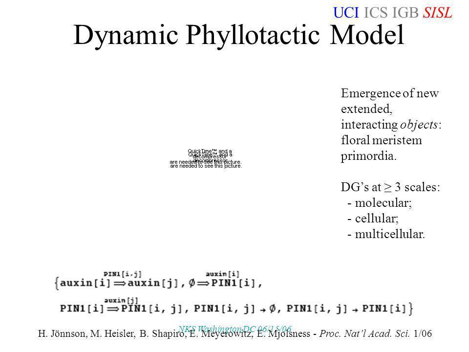 UCI ICS IGB SISL NKS Washington DC 06/15/06 Dynamic Phyllotactic Model H. Jönnson, M. Heisler, B. Shapiro, E. Meyerowitz, E. Mjolsness - Proc. Natl Ac