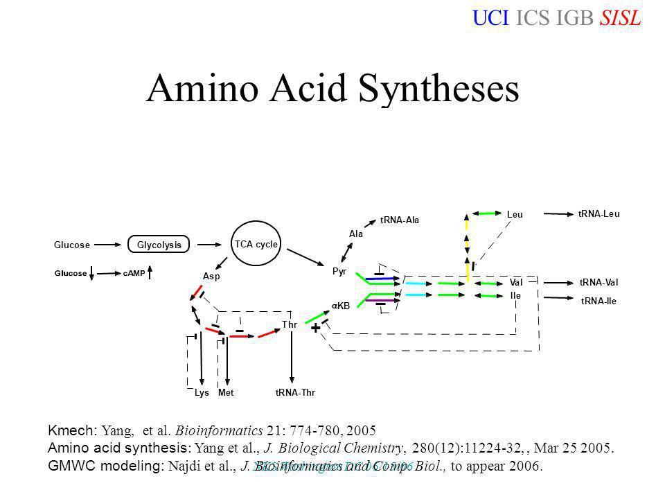 UCI ICS IGB SISL NKS Washington DC 06/15/06 Amino Acid Syntheses Kmech: Yang, et al. Bioinformatics 21: 774-780, 2005 Amino acid synthesis : Yang et a