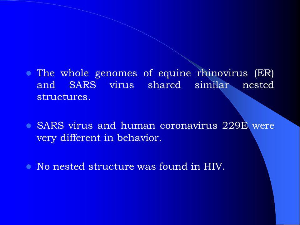 The whole genomes of equine rhinovirus (ER) and SARS virus shared similar nested structures.