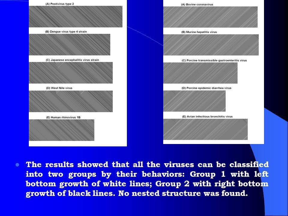 The results showed that all the viruses can be classified into two groups by their behaviors: Group 1 with left bottom growth of white lines; Group 2 with right bottom growth of black lines.