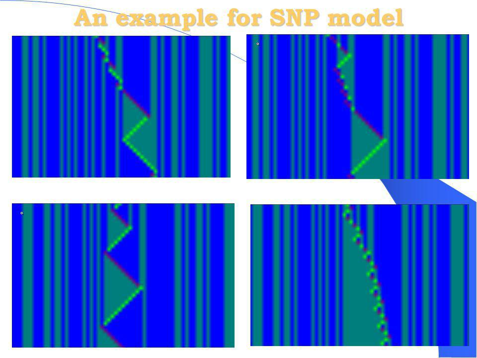 An example for SNP model
