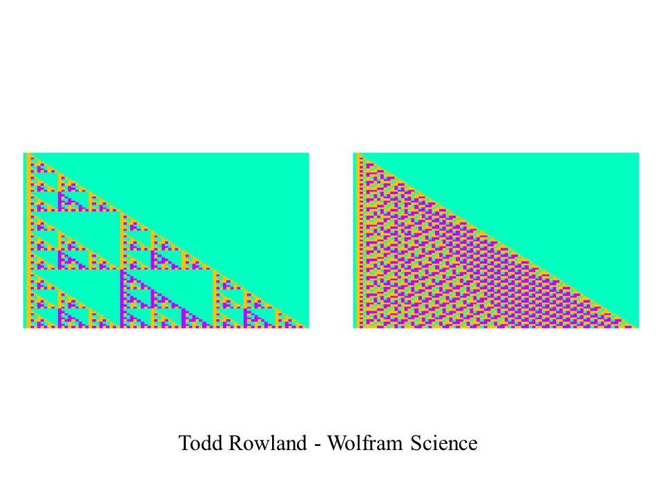 Todd Rowland - Wolfram Science