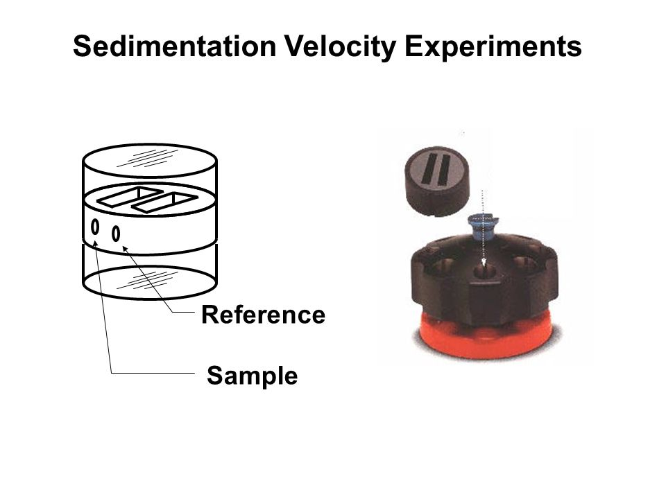 Reference Sample Sedimentation Velocity Experiments