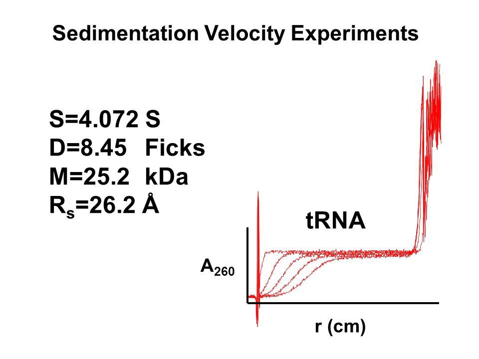 tRNA Sedimentation Velocity Experiments A 260 r (cm) S=4.072 S D=8.45Ficks M=25.2kDa R s =26.2 Å