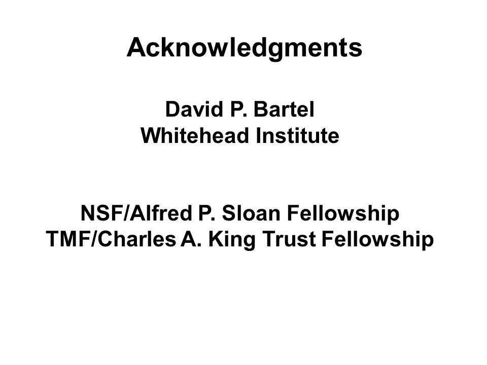 Acknowledgments David P. Bartel Whitehead Institute NSF/Alfred P. Sloan Fellowship TMF/Charles A. King Trust Fellowship