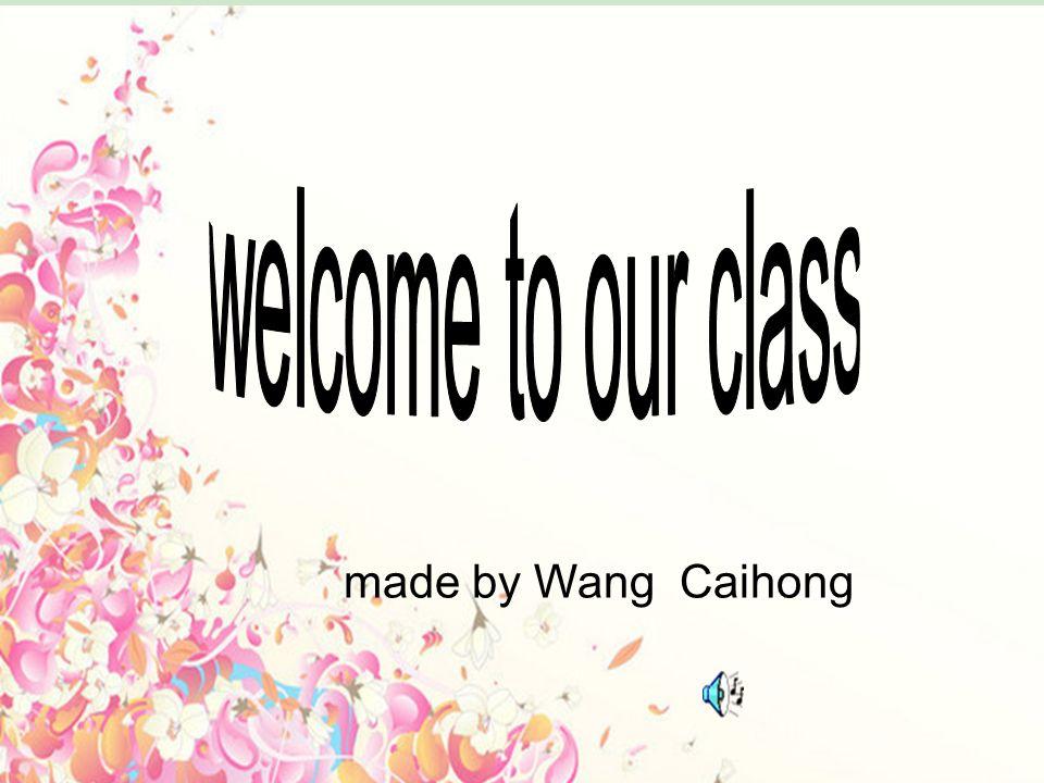 28.01.2014 made by Wang Caihong