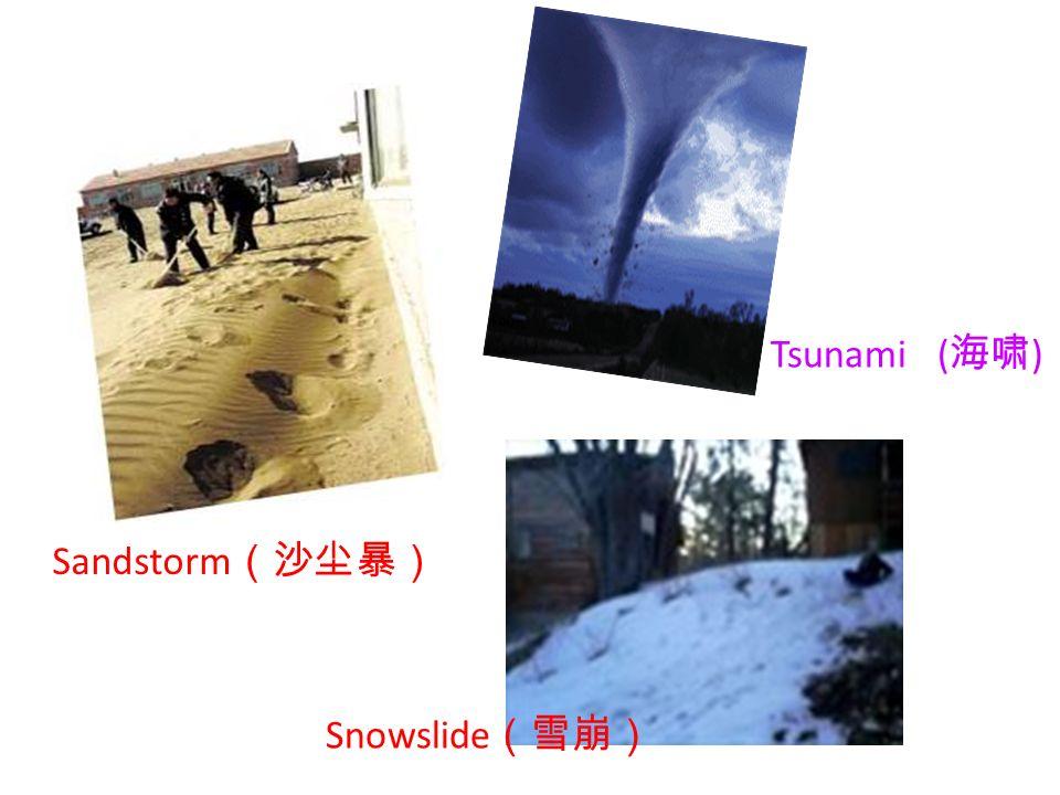 Sandstorm Snowslide Tsunami ( )