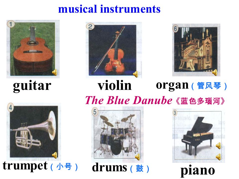 Kinds of music: classical music blues jazz opera pop rock techno… How do people play them? instrument ( )