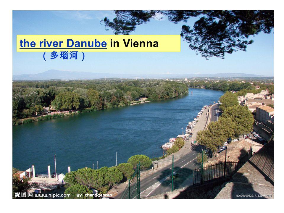 guitarviolin piano trumpet organ drums musical instruments The Blue Danube