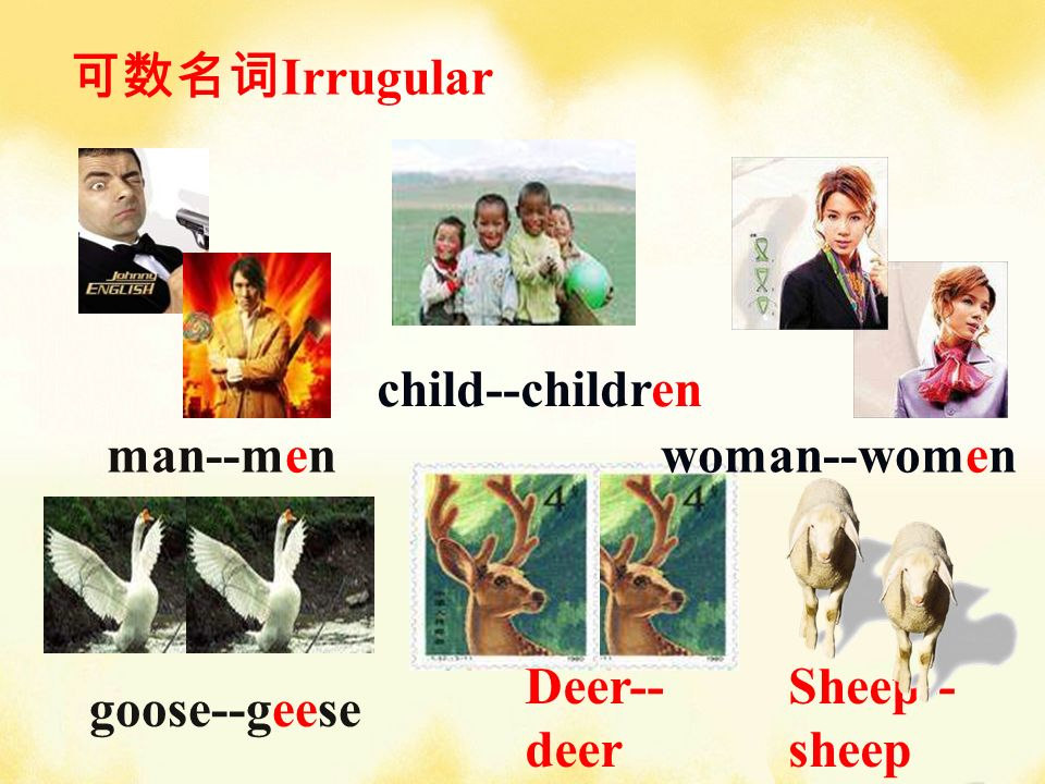 child--children woman--women Deer-- deer Sheep-- sheep man--men goose--geese Irrugular