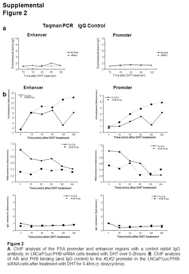 Supplemental Figure 3 a b * * * 0 1 2 3 4 5 6 7 8 9 10 No dox+ RNAiNo dox+ RNAi KLK2TMPRSS2 Fold Increase in Expression 0 20 40 60 120 240 480 Time after treatment (min) Figure 3 A.