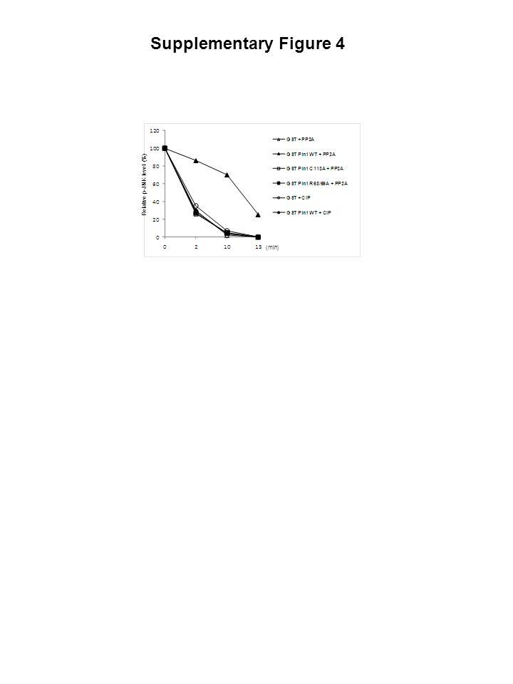 supernatant Pin1 WTPin1 C113AGST 0 20 40 60 0 20 40 60 0 20 40 60 (min) [ 32 P]-c-Jun IB : JNK IB : GST Fold 1.6 1.6 1.4 1.2 1.0 1.0 1.0 1.0 1.1 1.0 0.9 0.9 IB : p-JNK input Supplementary Figure 5