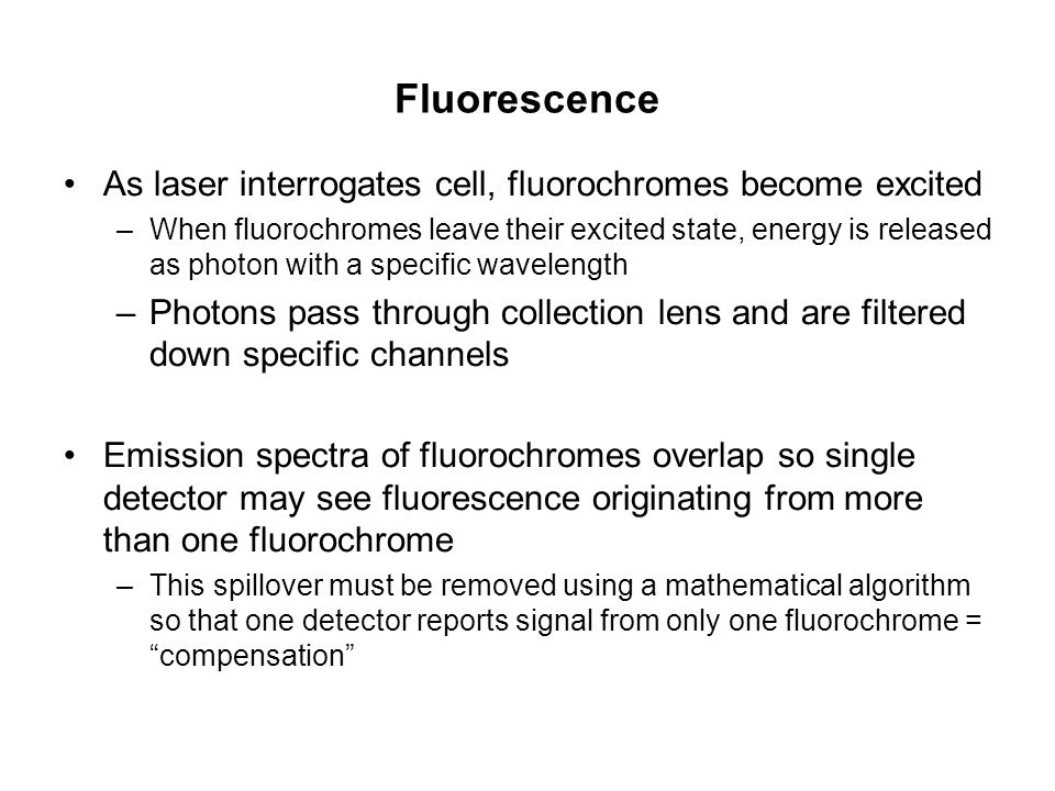 Fluorescence As laser interrogates cell, fluorochromes become excited –When fluorochromes leave their excited state, energy is released as photon with