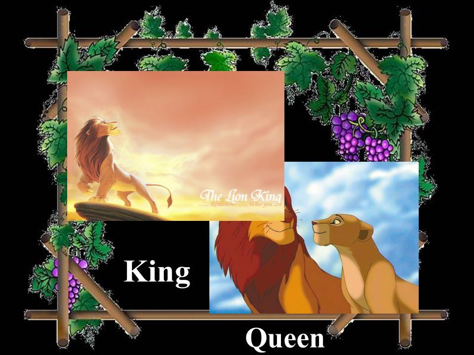 King Queen