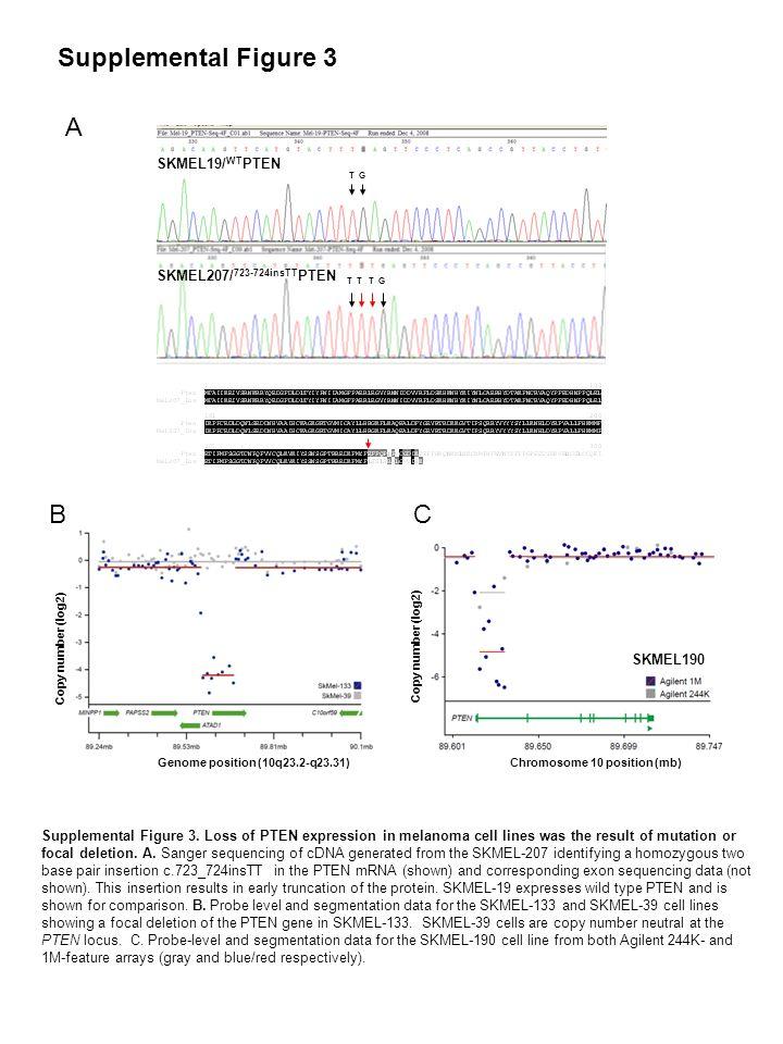 SKMEL19/ WT PTEN SKMEL207/ 723-724insTT PTEN GT TT TG A B Copy number (log2) Chromosome 10 position (mb) SKMEL190 Supplemental Figure 3 C Supplemental