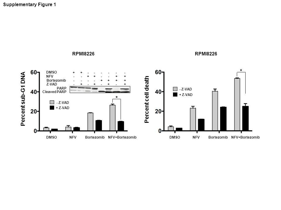 Percent sub-G1 DNA Percent cell death DMSONFVBortezomibNFV+BortezomibDMSONFVBortezomibNFV+Bortezomib DMSO NFV Bortezomib Z-VAD PARP Cleaved PARP + - -