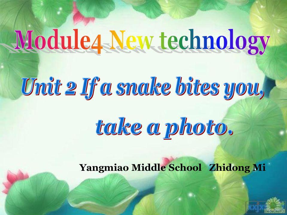 Yangmiao Middle School Zhidong Mi