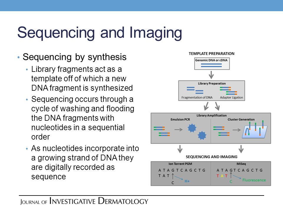 Sequencing and Imaging Sequencing by synthesis Library fragments act as a template off of which a new DNA fragment is synthesized Sequencing occurs th