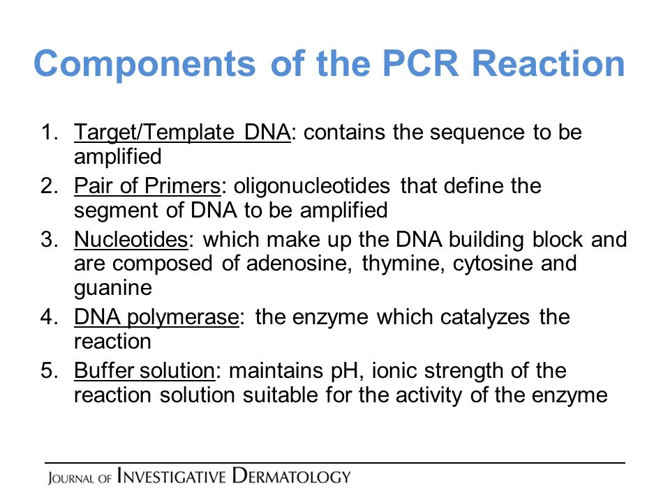 Components of the PCR Reaction 1.Target/Template DNA: contains the sequence to be amplified 2.Pair of Primers: oligonucleotides that define the segment of DNA to be amplified 3.Nucleotides: which make up the DNA building block and are composed of adenosine, thymine, cytosine and guanine 4.DNA polymerase: the enzyme which catalyzes the reaction 5.Buffer solution: maintains pH, ionic strength of the reaction solution suitable for the activity of the enzyme