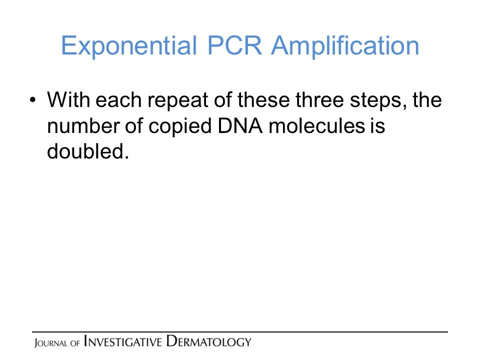 Exponential PCR Amplification With each repeat of these three steps, the number of copied DNA molecules is doubled.
