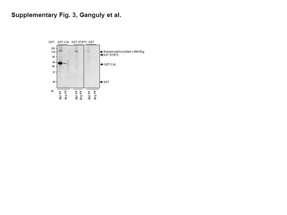 GST-CrkGST-STAT3GST GST-STAT3 GST-Crk Abl PP Arg PP Abl PP Arg PP Abl PP IP: 182 26 115 82 64 49 37 GST Supplementary Fig.