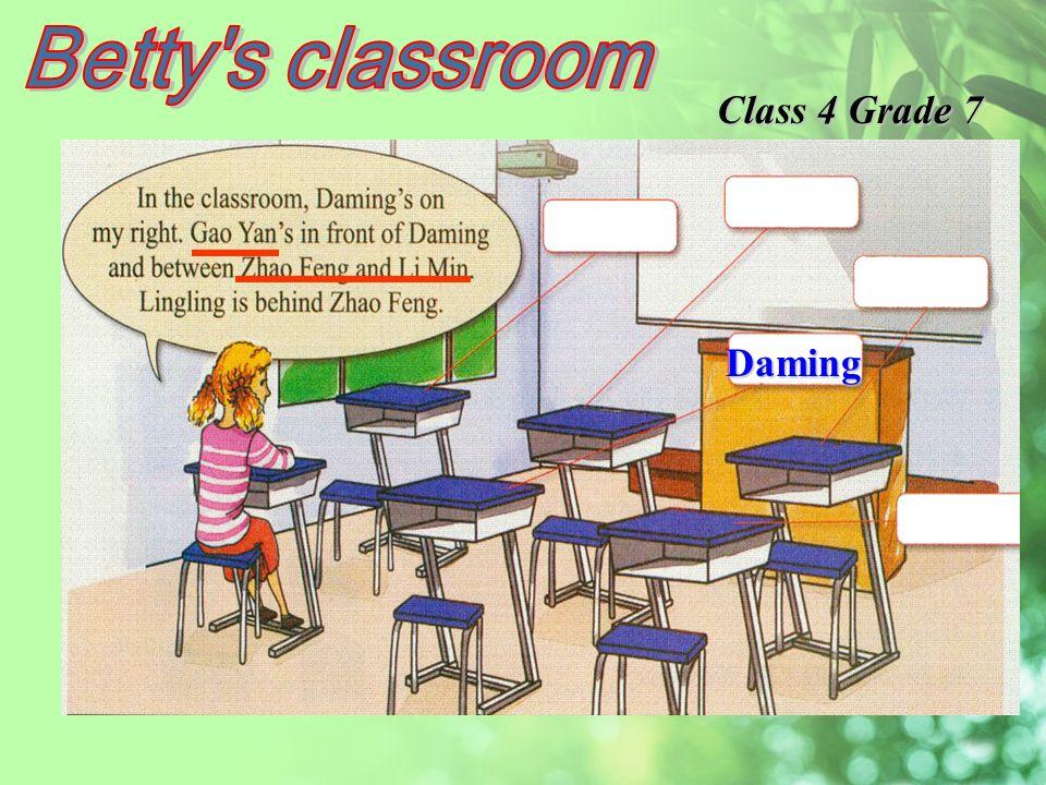 Daming Class 4 Grade 7