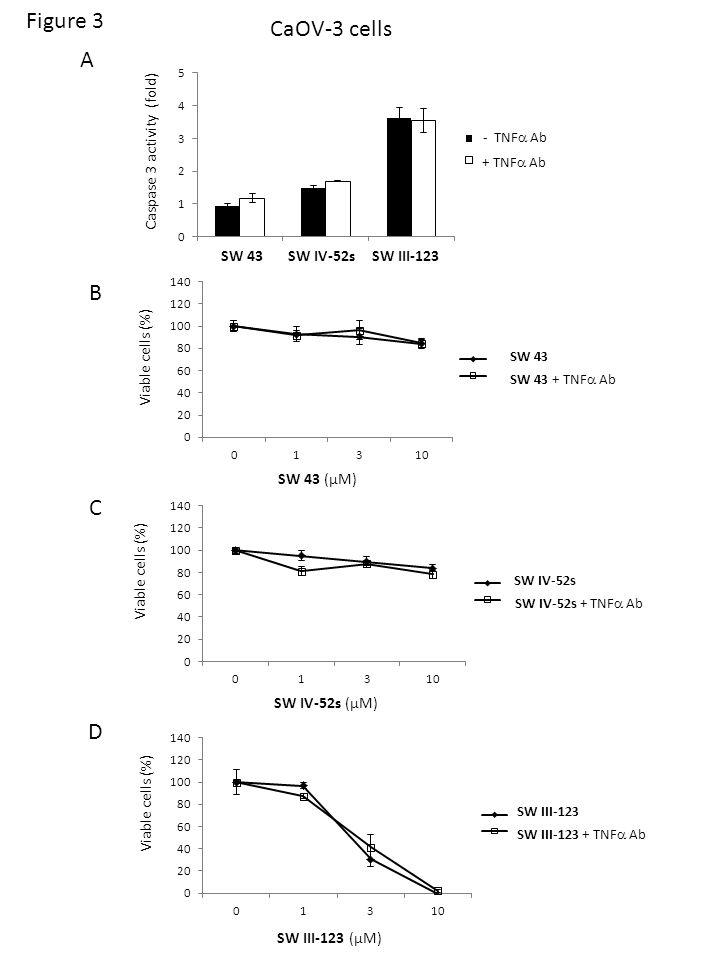 CaOV-3 cells A Figure 3 SW 43 SW IV-52s SW III-123 Caspase 3 activity (fold) - TNF Ab + TNF Ab SW 43 SW 43 + TNF Ab Viable cells (%) B SW 43 (µM) SW IV-52s SW IV-52s + TNF Ab Viable cells (%) C SW IV-52s (µM) SW III-123 SW III-123 + TNF Ab Viable cells (%) D SW III-123 (µM)
