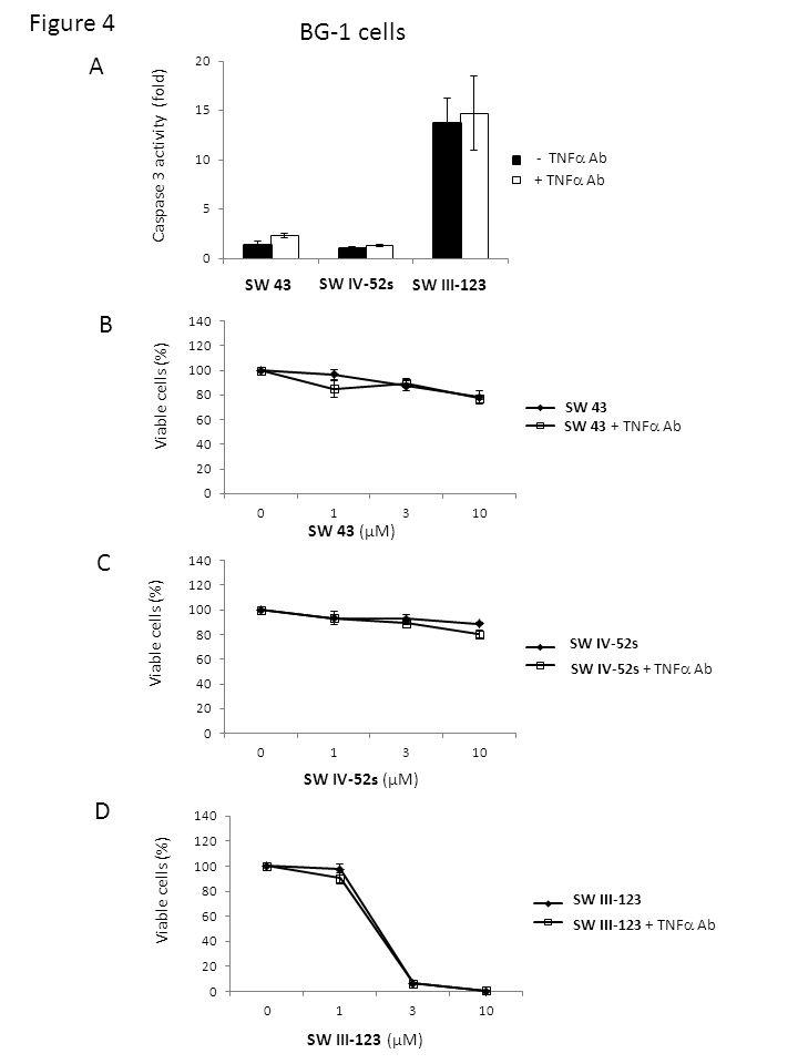 SW 43 SW IV-52s SW III-123 Caspase 3 activity (fold) - TNF Ab + TNF Ab BG-1 cells A SW 43 SW 43 + TNF Ab Viable cells (%) B SW 43 (µM) SW IV-52s SW IV-52s + TNF Ab Viable cells (%) C SW IV-52s (µM) SW III-123 SW III-123 + TNF Ab Viable cells (%) D SW III-123 (µM) Figure 4