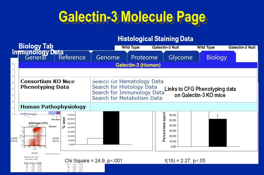Galectin-3 Molecule Page Biology Tab Links to CFG Phenotyping data on Galectin-3 KO mice Histological Staining Data Immunology Data Metabolism Data