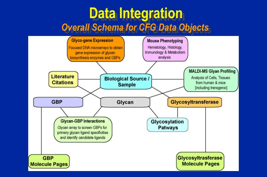 Data Integration Overall Schema for CFG Data Objects